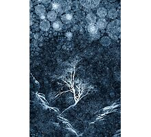Midnight Ice Storm Photographic Print