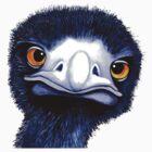 Nosy Emu by Margaret Sanderson