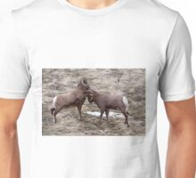 Big Horn Rams     #7812 Unisex T-Shirt