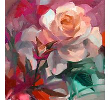 Rosy Pink  Photographic Print