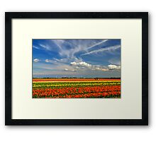 Tricolore. Framed Print