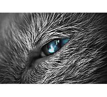 Raging Blue Photographic Print