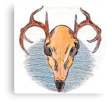 Colored Pencil Deer Skull  Canvas Print