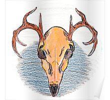 Colored Pencil Deer Skull  Poster