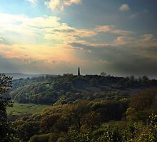 View from Chase Hill towards Eastnor, England by LisaRoberts