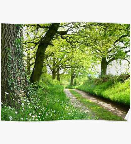 A Green Way Poster
