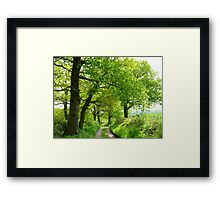 A Green Haven Framed Print