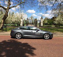 Tesla Model S in Regent's Park London by TigerOPC