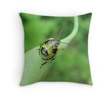 Insect Bug on a Pea Pod Throw Pillow
