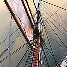 Rigging on the Star Of India by Jennifer Hulbert-Hortman
