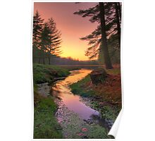 Sunset on a Remote Forest Lake Poster
