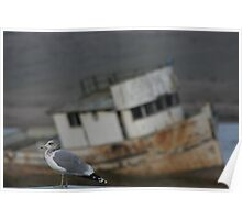 mystery abandoned trawler Point Reyes Poster
