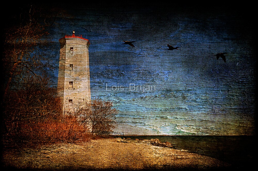 Presqu'ile Lighthouse by Lois  Bryan