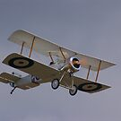 Those magnificent men in their flying machines... by Peter Hall