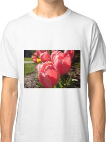 Pink Tulips  Classic T-Shirt