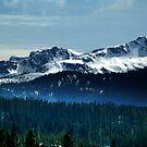 Strathcona Park Mountains by Jann Ashworth