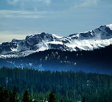 Strathcona Park Mountains by Jann Ashworth