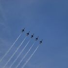 Thunderbird Straight Line by stephanieunton
