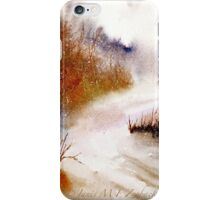 Landscape..Winter Walk iPhone Case/Skin