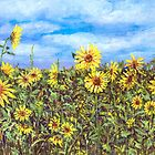 Field Of Sunflowers by arline wagner