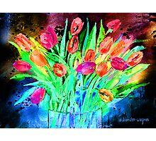 Bold Tulips Photographic Print