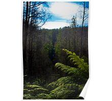 Keppel Falls Lookout. Poster