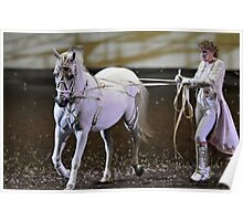 Classic art of Horsemanship Poster