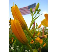 Blooming Patriot Photographic Print