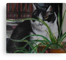Restful Times Canvas Print