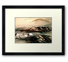 CBP...Early Morning Feed. Framed Print