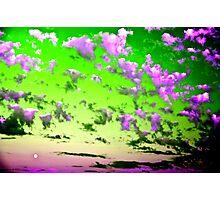 Vitamin C Skyscape Photographic Print