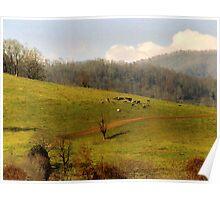 Mountain Pasture Poster