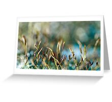 Moss abstract Greeting Card