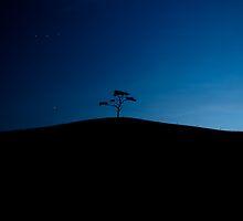 Night to day by gerk86