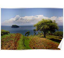 Earth Island Poster