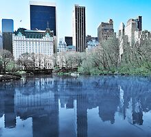 Central Park1 by Svetlana Sewell