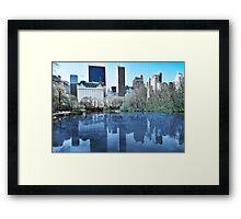 Central Park1 Framed Print