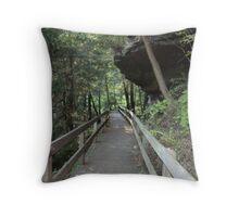 Rock overhang at Mill Creek Park Throw Pillow