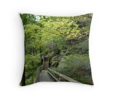 Along a trail at Mill Creek Park Throw Pillow