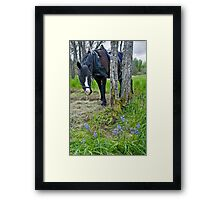 Grass is Greener and the Flowers Bluer Framed Print