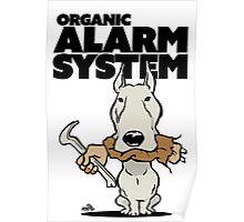 Pitbull alarm system cartoon Poster