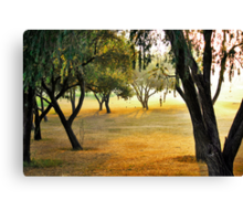 Nothing like a walk in the ol' park Canvas Print