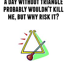 A Day Without Triangle by GiftIdea