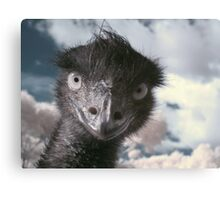Are you looking at me, Jimmy? Canvas Print