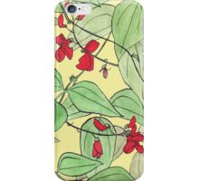 Scarlet runner beans iPhone Case/Skin
