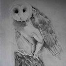 Barn Owl,(done) by rahulsutar