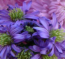Spring Flowers by Carla Jensen