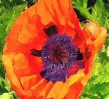 Margo's Poppy by Randy Sprout