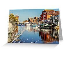 At the riverside. Greeting Card