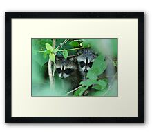 Shhhh...be quiet! Maybe she won't see us..... Framed Print